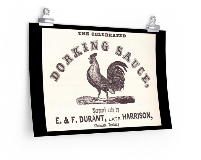 Dorking Sauce Advertisement - Fine Art Poster - From An Antique Vintage Illustration, Circa 1858.