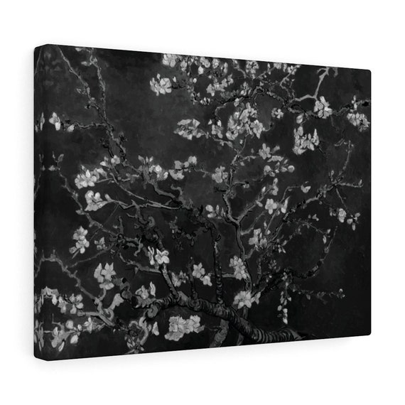 Almond Blossoms On Black Canvas Gallery Wrap, Vincent Van Gogh, 1890