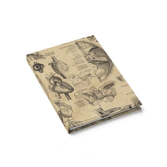 Vintage Anatomy Hardcover Journal, Ruled Line, Vintage Illustrations