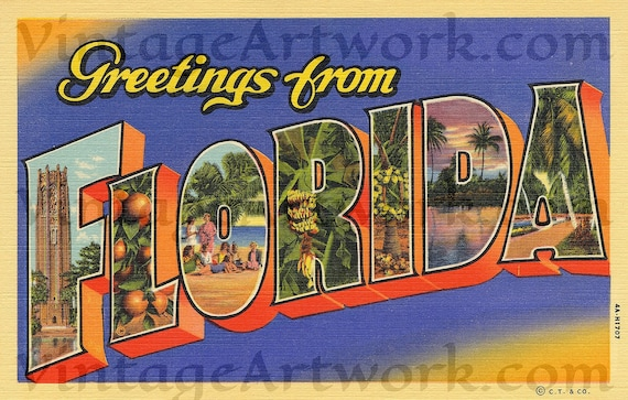 Greetings From Florida Postcard Front, Digital Download, Curt Teich & Co. Publisher,  1934