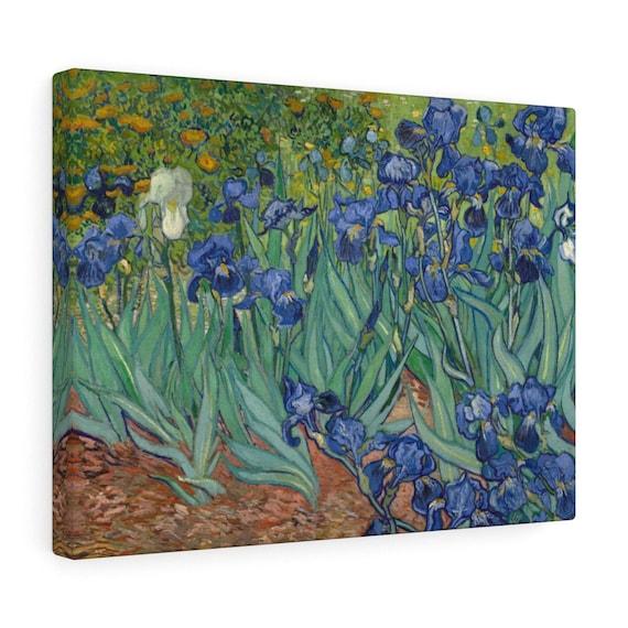 Irises Canvas Gallery Wrap, Vincent Van Gogh, 1890