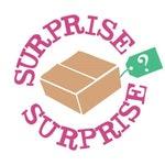 Surprise Bag | Hair Scrunchie | 5 Pack