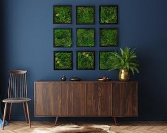 """Moss Wall Art 8x8"""" Mood Moss Frames - Set of 1, 3, or 9"""