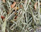 Botanical Natural Hay Timothy Grass Foraging Blend Lavender Chamomile Carrot Bits Lemon Balm Clover USA Grown