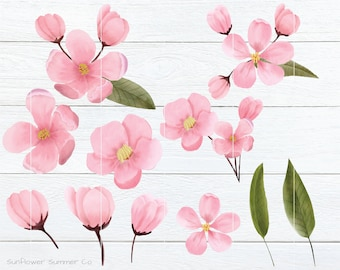 Cherry Blossom Clipart, Apple Blossom clipart, floral clipart, spring clipart, watercolor clipart, blossom clip art, botanical clipart