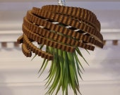 Wood Jellyfish Air Plant, Beach Decor, Upside Down hanging plant, hanging planter