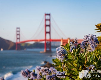Flowers by the Golden Gate Bridge. Print Sizes Vary