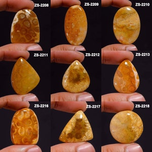 Natural Fossil Coral gemstone cabochon 40x27x5 MM Top quality Hand made smooth polished loose gemstone for jewelry making 48 CT AAA+