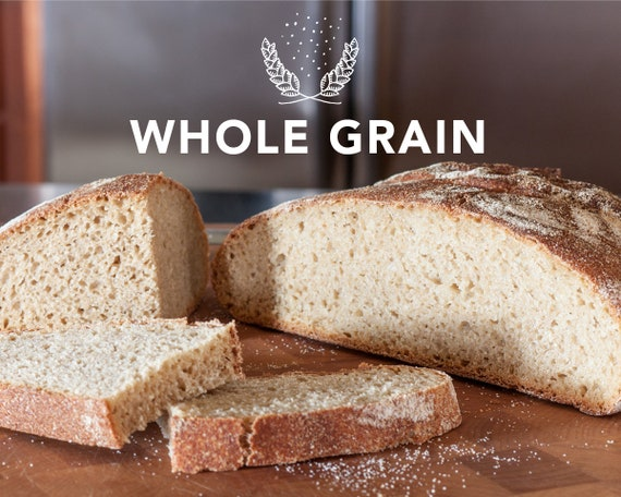Recipe For Rustic No Knead Artisan Bread Made With Whole Grain Wheat Flour Developed Especially For Homemade Flour Hearty Taste Texture