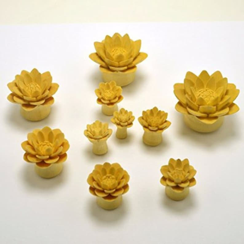 Unique and Stylish Handmade Gauges Water Lily Organic Ear Gauge Plugs 0g by Crown Republic Hand Carved Wooden Gauge Plug Jewelry