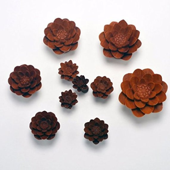 58 Water Lily Organic Ear Gauge Plugs by Crown Republic Hand Carved Wooden Gauge Plug Jewelry Unique and Stylish Handmade Gauges