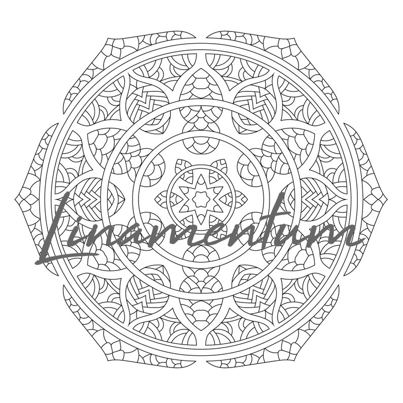 Mandala Pattern Coloring Page Adult Coloring Stress Relief 12 I