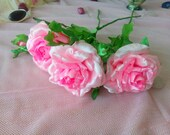 Pink Roses, Interior Bouq...