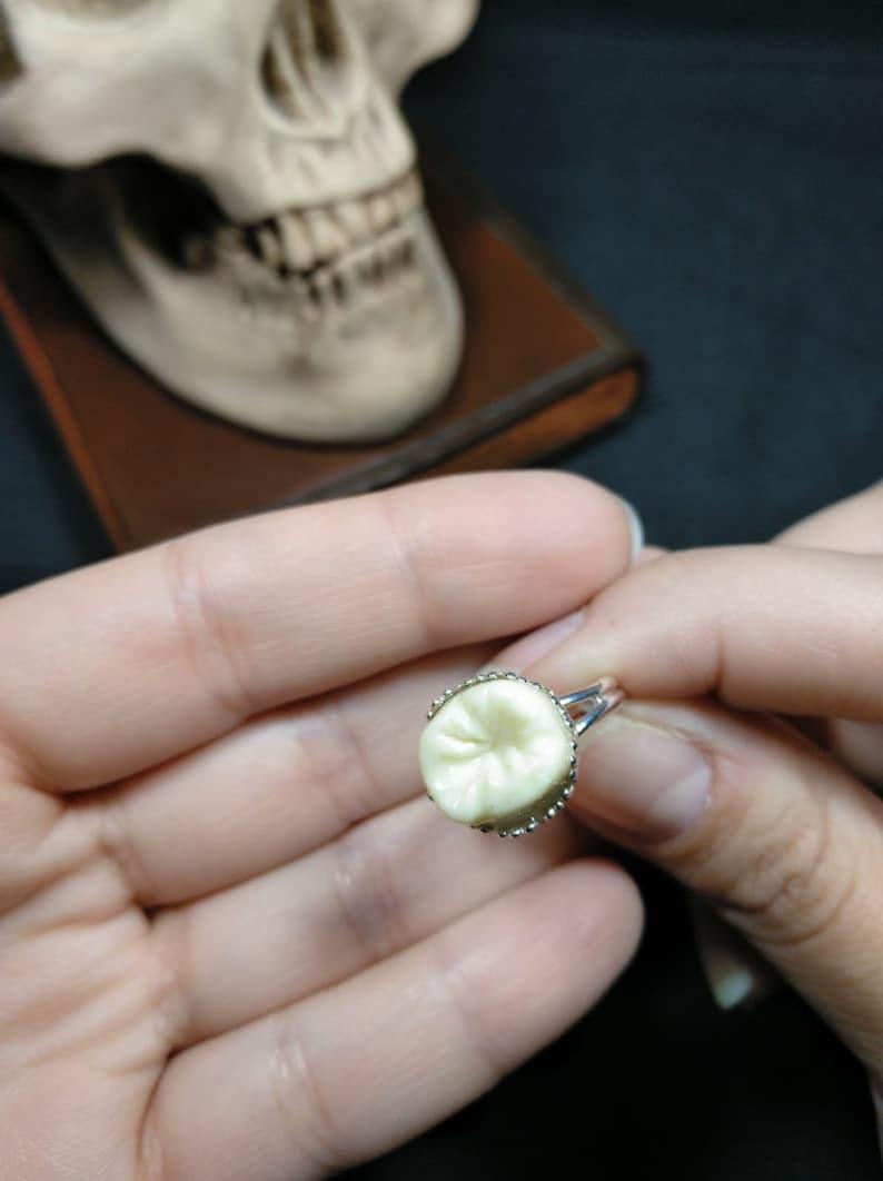 jewelry with teeth macabre jewelry grindstone rings tooth rings Human teeth halloween rings, gothic rings