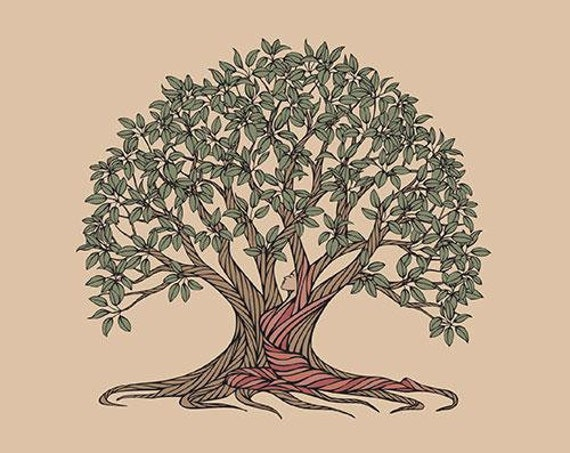 Earth Giant Tree Gift Series - Moreton Bay Fig's Gift - Book 7