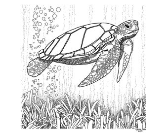 Turtle Coloring Pages - GetColoringPages.com   270x340