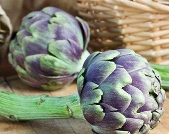Shipping Violetto di Chioggia 15 Heirloom Artichoke Seeds Seeds   $1.69 Max