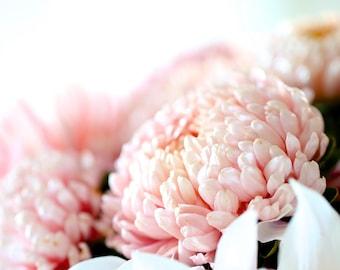 China Aster Janina Seeds  - Peony Aster - Callistephus chinensis - Annual Flower Seeds - Heirloom Flower