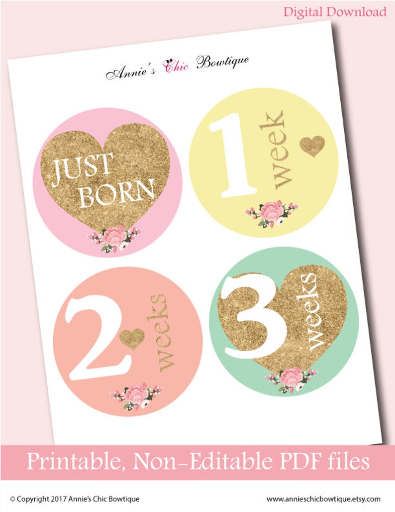 picture regarding Baby Month Stickers Printable called Printable regular monthly stickers, child regular stickers, Do-it-yourself every month stickers, Electronic kid thirty day period stickers, Gold Glitter, Immediate Down load P100