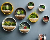 Metal Wall Hanging Planter, Air Plant Holders, Succulent Plant Terrarium Round Hanging Planters in Different Color