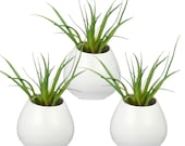 Set of 3 Mini White Ceramic Pots, Wall Mountable Plant Vase, 4 Inch Hanging Succulent Pots
