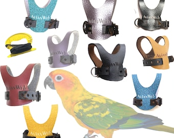 EZ Bird Harness with 6 ft Leash - Sized for mid-sized Conures, Quaker Parrots, Caiques, SMALL Lories & Rosellas, and birds of similar size