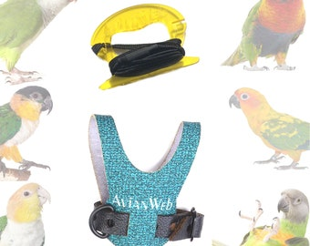 Sparkling SeaGreen Bird Harness & 6 Ft Leash - Personalize with your pets' names!
