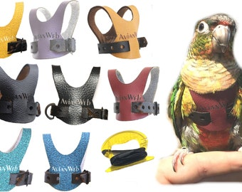 EZ Bird Harness with 6ft Leash - Size 5. Sized for SMALL Conures (i.e., Greencheeks and all members of the Pyrrhura family)