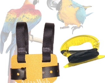 EZ Bird Harness with 6ft Leash. for birds - Size: 10 - birds weighing 600-1000 grams, such as most Blue & Gold Macaws and larger cockatoos