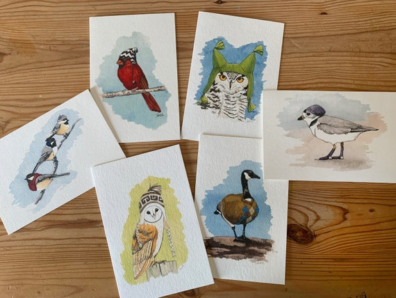 Bird Cards - Card Pack A