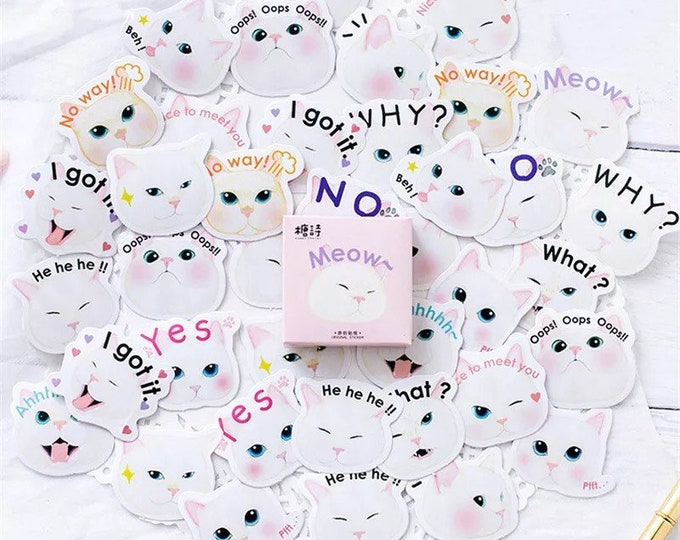 OMG Kittens Paper Sticker Box Set - 45 Stickers