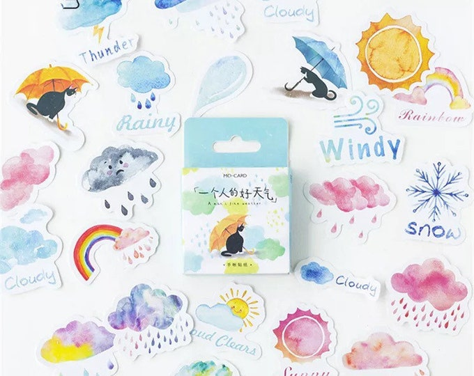 Nice Weather Sticker Box Set - 45 Stickers - Rain Clouds Sun Snow Small Stickers for Stationery School or Bullet Journal