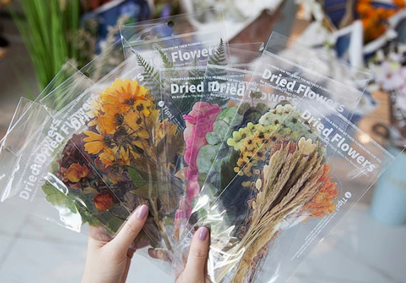 6pc Pressed Flowers Stickers - Large Premium Clear Stickers with Colorful Lifelike Dried Flower Designs