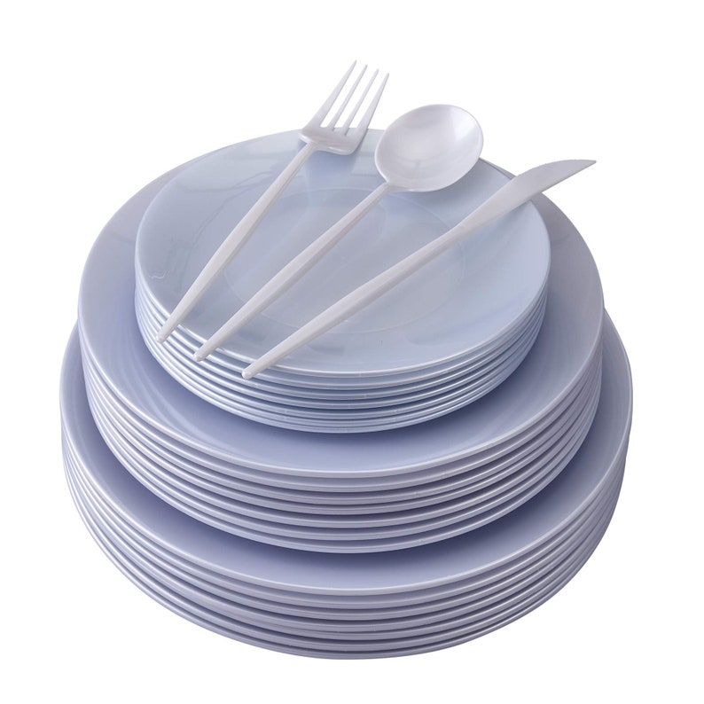 Party Disposable Dinnerware Set  156 Pc Opulence