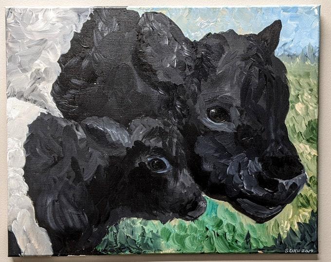 Beltie Mother and Calf -