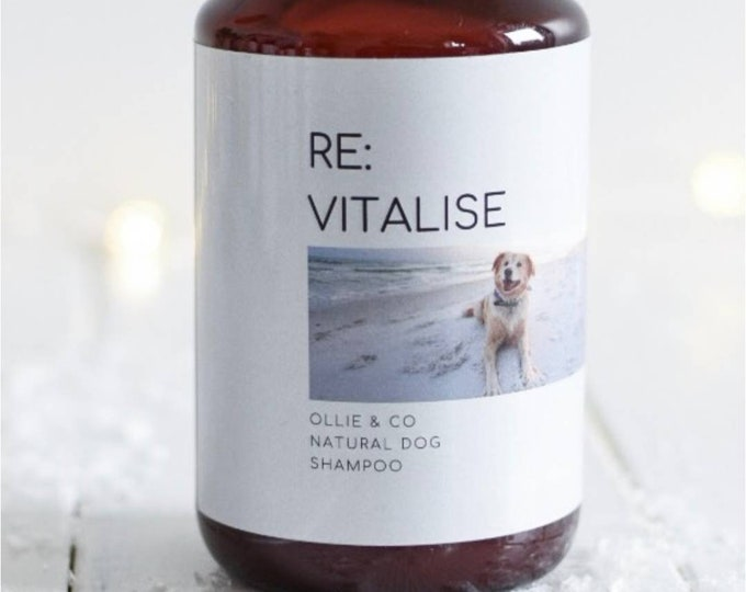 Ollie + Co | Re:Vitalise Natural Dog Shampoo with Sweet Orange