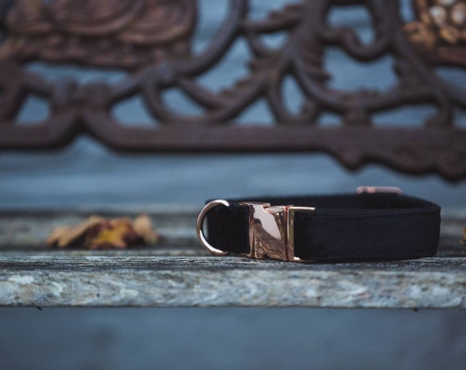 Black Moon Velvet Dog Collar Luxury Soft Velvet with Rose Gold by Ollie + Co