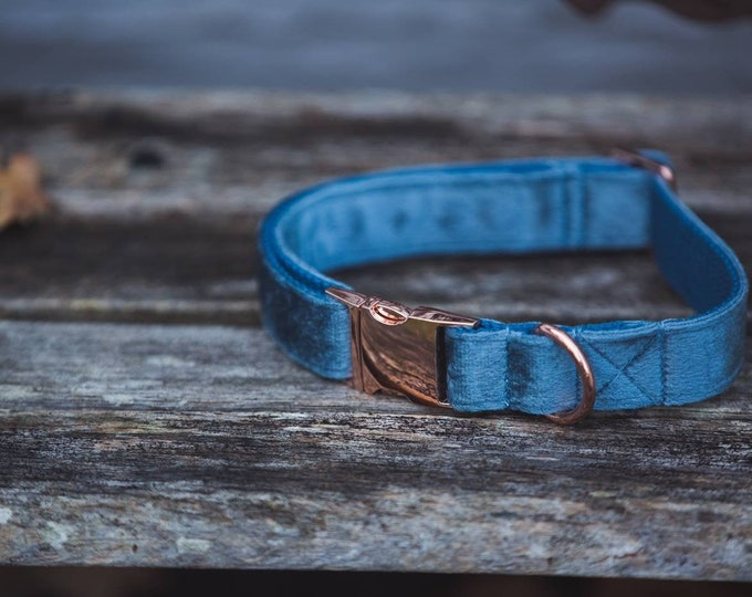 Dusty Blue Velvet Dog Collar - Luxury Soft Velvet with Rose Gold Buckle by Ollie + Co