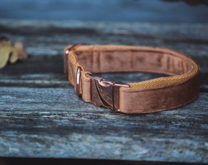 Soft Orange Velvet Dog Collar Luxury Soft Velvet with Rose Gold Buckle by Ollie + Co