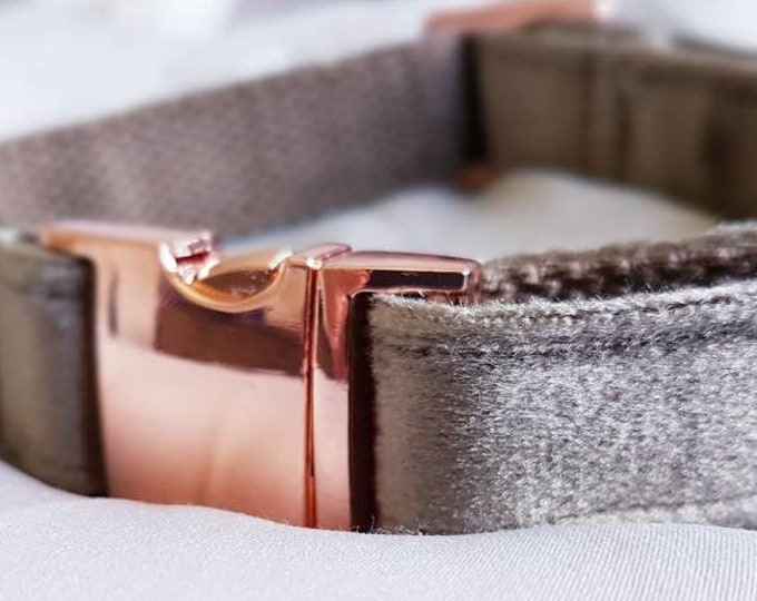 Light Mocha Velvet Dog Collar - Luxury Soft Velvet with Rose Gold Buckle by Ollie + Co