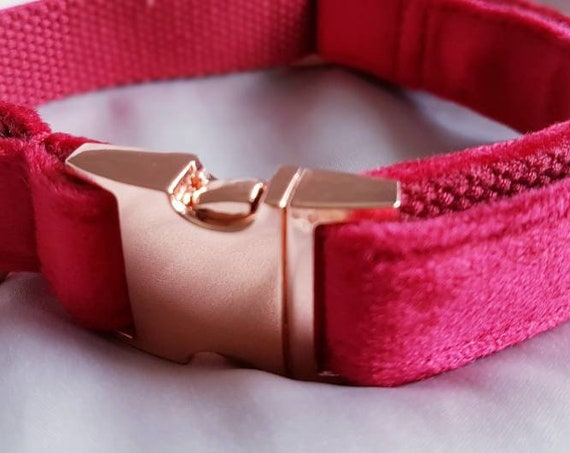 Regal Red Velvet Dog Collar Luxury Red with Rose Gold Buckle by Ollie + Co