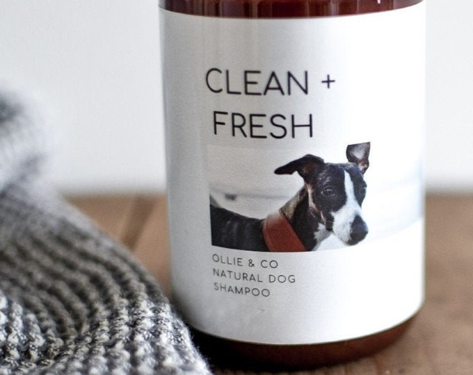 Clean + Fresh Natural Dog Shampoo with Calming Aromatherapy Mist Set By Ollie + Co.