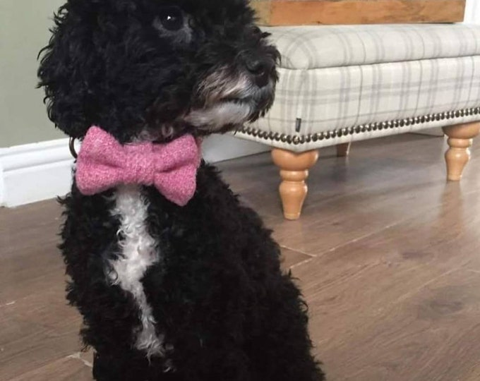 The Millie - Baby Pink Harris Tweed Dog Collar with Bow Tie Christmas - Ollie & Co