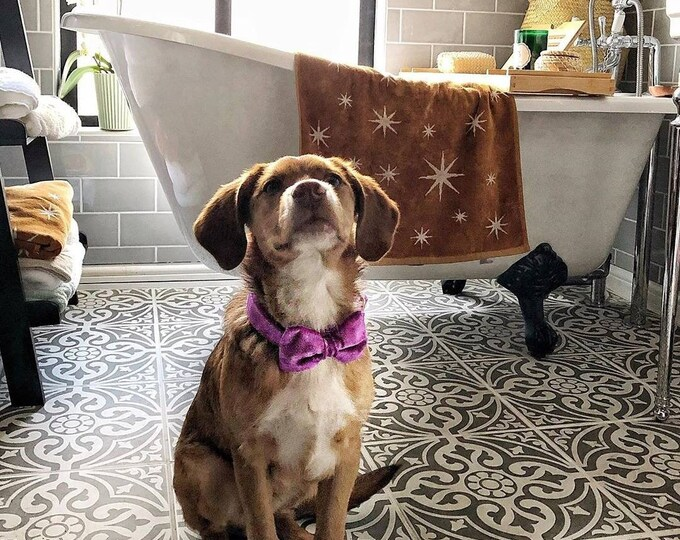 Party Lux Orchid Pinky Purple Crushed Velvet BowTie Dog Collar Rose Gold by Ollie + Co