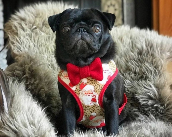 The Portabello - Red Harris Tweed Dog Collar with Bow Tie Christmas - Ollie & Co