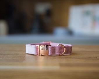 Lux Baby Pink Velvet Dog Collar Soft Velvet with RoseGold Buckle   Ollie & Co