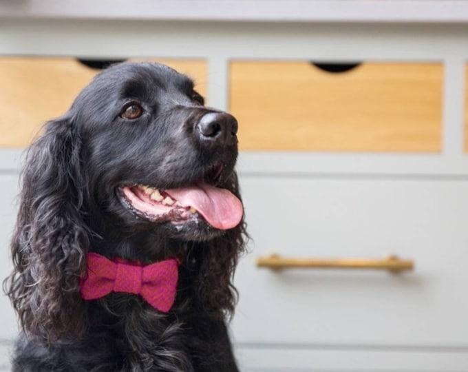 The Lotte - Pink Herringbone Harris Tweed Dog Collar with BowTie   Ollie & Co