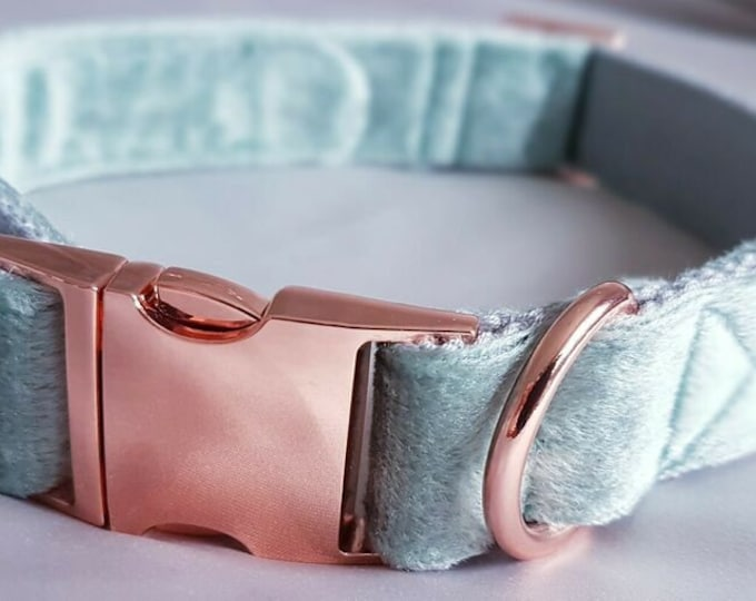 Soft Turquoise Velvet Dog Collar Luxury Soft Velvet with Rose Gold Buckle by Ollie + Co