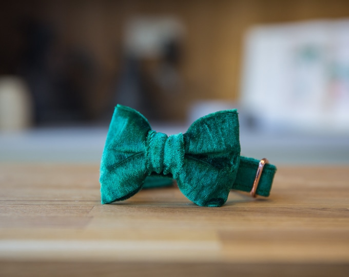 Party Lux Emerald Green Crushed Velvet Dog Collar RoseGold Buckle   Ollie & Co