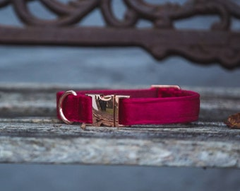 Lux Ruby Red Velvet Dog Collar Luxury Red with Rose Gold Buckle   Ollie & Co
